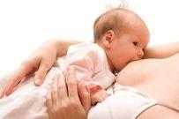 Khám phá quá trình sản xuất sữa của cơ thể mẹ