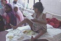 Cuộc sống bí ẩn của cô bé sống chung với bầy khỉ, đi bằng 4 chân, không nói tiếng người