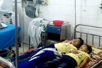 Hái quả lạ chia nhau ăn, 5 trẻ nhập viện cấp cứu
