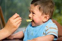 Mách mẹ 4 yếu tố quan trọng quyết định việc cho trẻ ăn dặm thành công