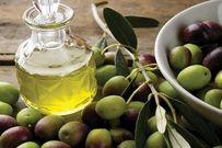4 cách trị rụng tóc bằng dầu oliu cực hay và dễ làm tại nhà