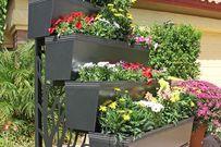 Gợi ý 8 kiểu vườn trên sân thượng cực đẹp cho nhà phố có diện tích nhỏ