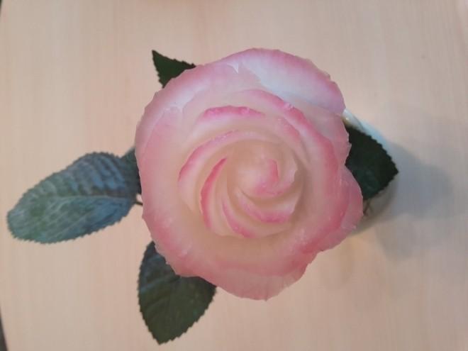 tỉa hoa hồng từ củ cải