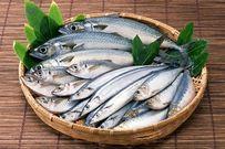 Khi nào cho bé ăn dặm với cá và nên chọn loại cá nào an toàn với bé?