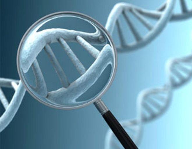 kiểm tra nhiễm sắc thể
