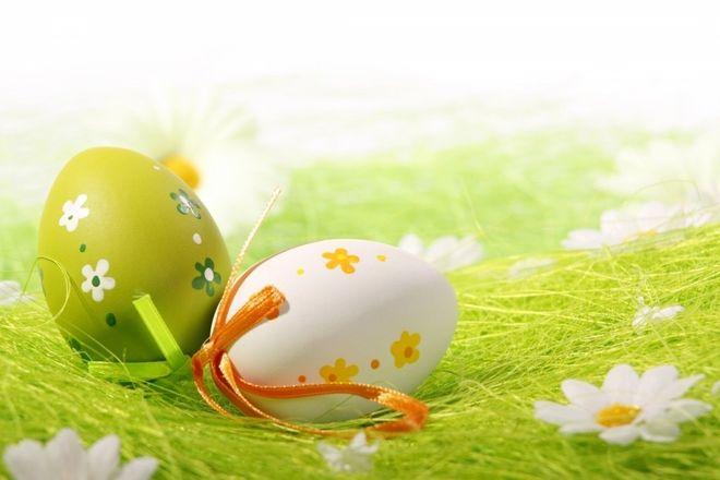 hai quả trứng dễ thương