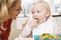 Những ưu khuyết của 2 phương pháp ăn dặm hot nhất hiện nay: Ăn dặm kiểu Nhật và ăn dặm BLW