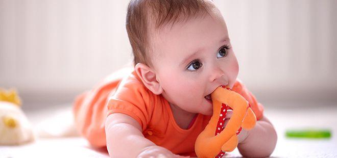 bé ngậm đồ chơi bằng bông