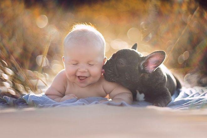 bé và chó