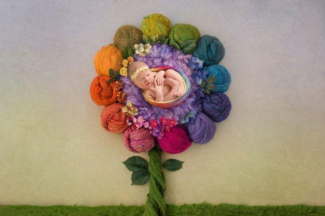 bông hoa bé