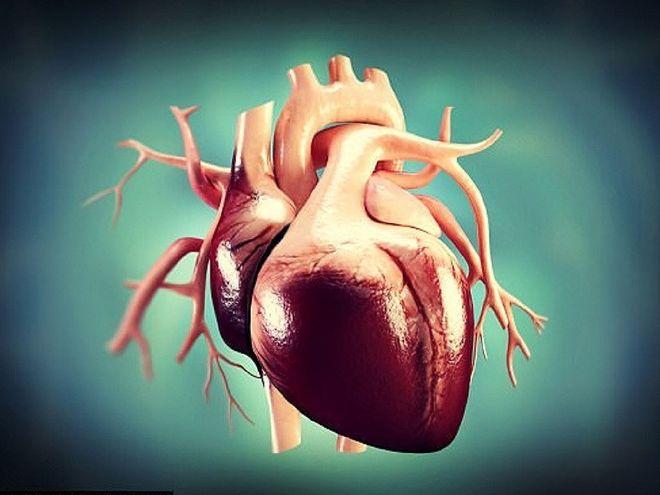 Trẻ béo phì có nguy cơ cao mắc các bệnh về tim mạch nguy hiểm