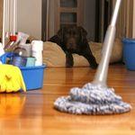 Giữ nhà cửa sạch sẽ cả tuần chỉ với 15 phút mỗi ngày