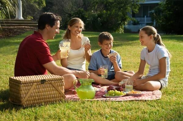 15623-family-picnic.jpg