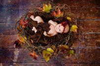Năm Ất Mùi 2015 sinh con tháng nào tốt nhất?