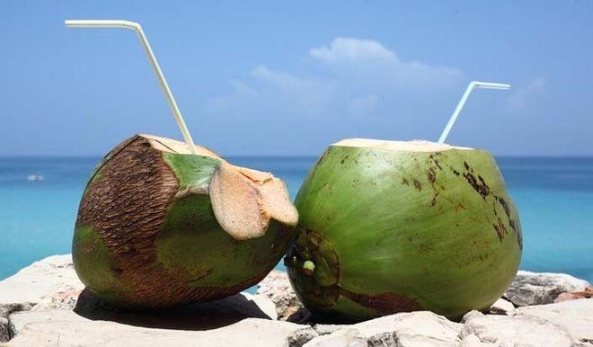 nước dừa chứa rất nhiều vitamin cho mẹ bầu