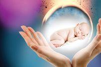 Trứng nhỏ có thụ thai được không và hướng cải thiện chất lượng trứng trong 90 ngày