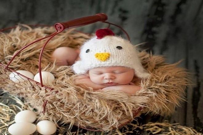 bé ngủ say trong ổ ấp trứng