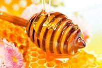 Mật ong với bà bầu - thần dược cho sức khỏe sinh sản
