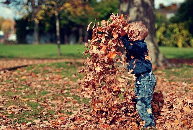 tạo không gian để trẻ khám phá