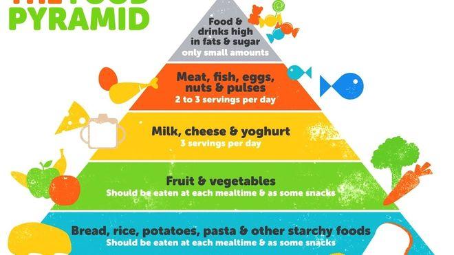 tháp dinh dưỡng cho bé