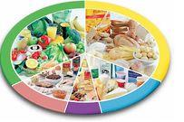 Biểu đồ dinh dưỡng cho bé chính xác nhất mẹ nên tham khảo