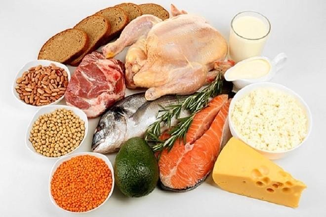 các thực phẩm giàu protein
