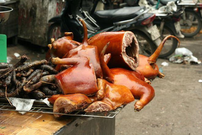 ăn thịt chó