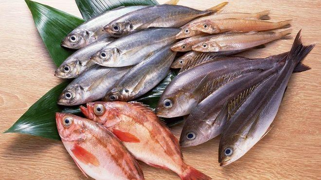 Mẹ bầu cần tránh xa các loại cá có lượng thủy ngân cao để không gây ảnh hưởng xấu cho thai nhi