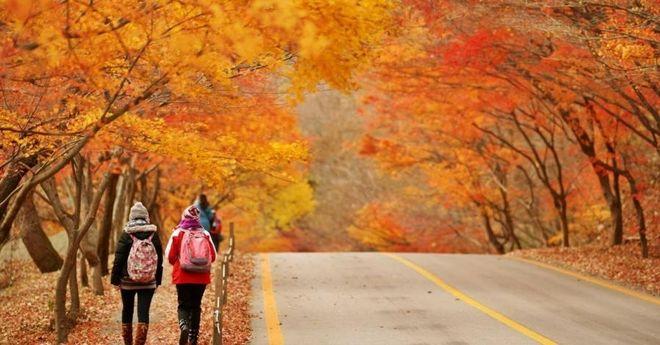 Các chuyên gia phân tích sức sống của tinh trùng vào mùa thu là mạnh nhất