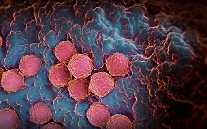 rubella là một căn bệnh vô cùng nguy hiểm