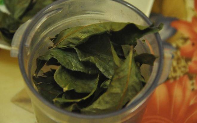 cho lá trà xanh khô vào máy xay sinh tố