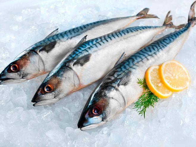 chọn cá thu