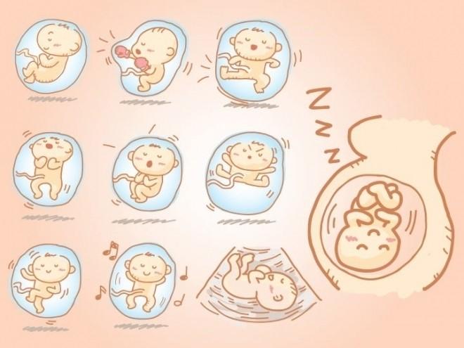 thai nhi cử động trong bụng mẹ