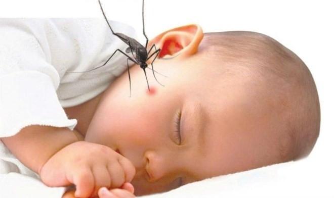 muỗi chích bé