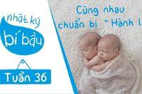 Thai nhi 36 tuần tuổi: Bé đã sẵn sàng để chào đời
