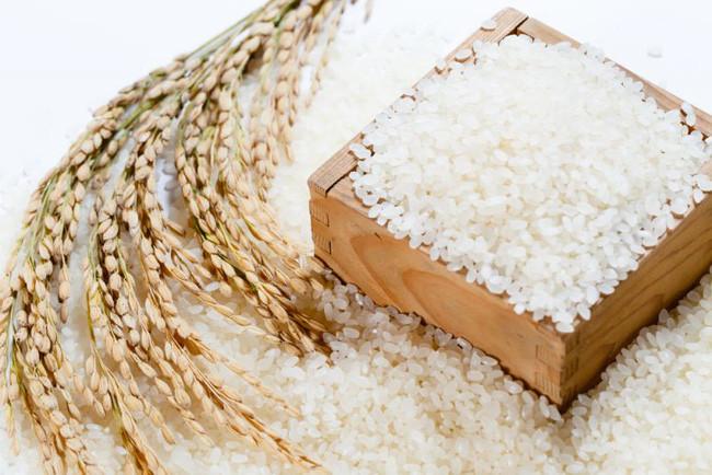 khâu chuẩn bị gạo rất quan trọng trong cách làm bột gạo cho trẻ ăn dặm