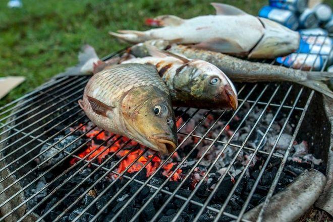 nướng cá trên bếp than hoa