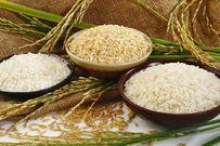 Cách làm bột gạo cho bé tiện lợi an toàn nên có trong sổ tay chăm con của mẹ