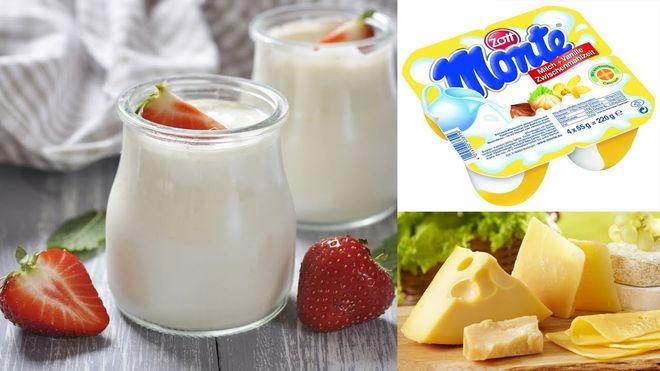 các chế phẩm từ sữa