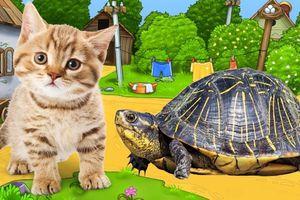 Dạy bé tập nói tên các con vật gần gũi qua hình ảnh thực tế
