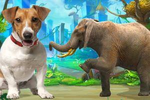 Dạy trẻ học nhận biết các con vật giúp phát triển toàn diện tư duy và ngôn ngữ
