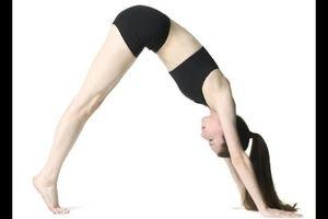 Yoga giảm mỡ bụng cho người mới tập đơn giản hiệu quả nhất