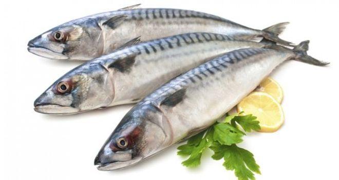 hạn chế ăn những loại cá chứa nhiều thủy ngân như cá thu và các ngừ