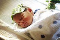 Hơ lá trầu cho trẻ sơ sinh theo kinh nghiệm dân gian và những lưu ý mẹ cần biết
