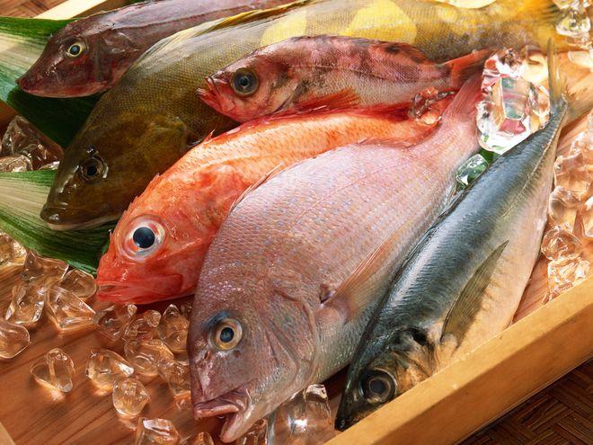 chọn cá tươi ngon