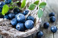 Top 13 loại trái cây tốt nhất mẹ nào đang cho con bú nên ăn thường xuyên