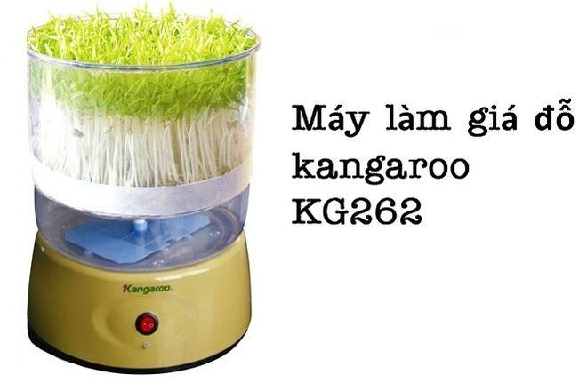 máy làm giá đỗ kangaroo KG262