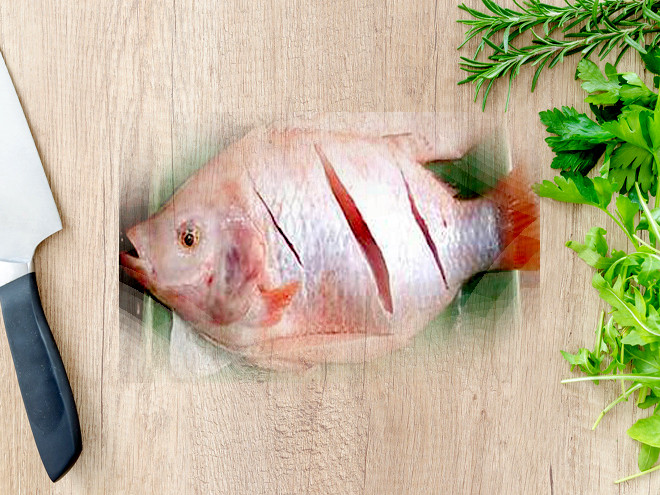 Khứa cá diêu hồng