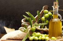 Tác dụng hỗ trợ sinh sản đặc biệt từ dầu oliu