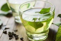 Thực hư công dụng tăng khả năng thụ thai của trà xanh